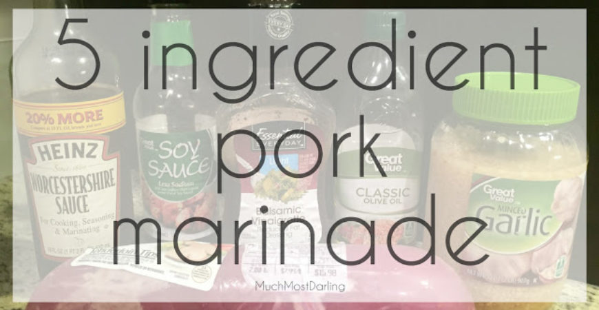 5 Ingredient Pork Marinade Recipe