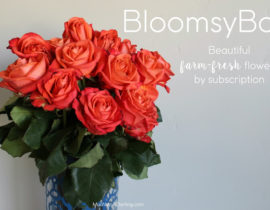 BloomsyBox: Farm fresh flowers, straight to your door every month