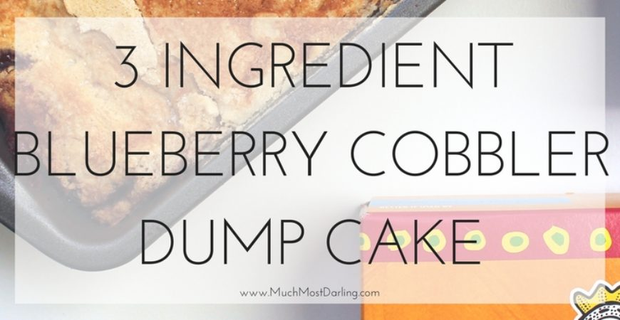 3 Ingredient Immaculate Blueberry Cobbler