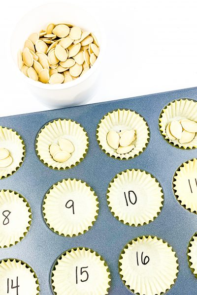 pumpkin seed counting activity for toddlers and preschoolers